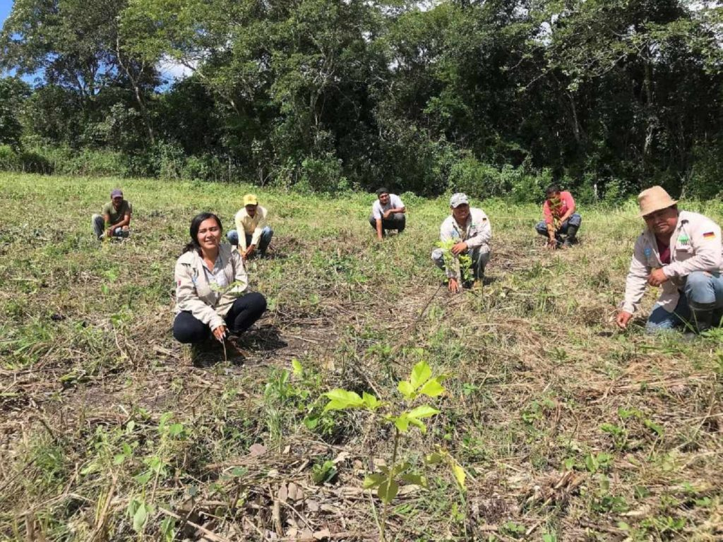 pm-sonoro-plant-for-the-planet