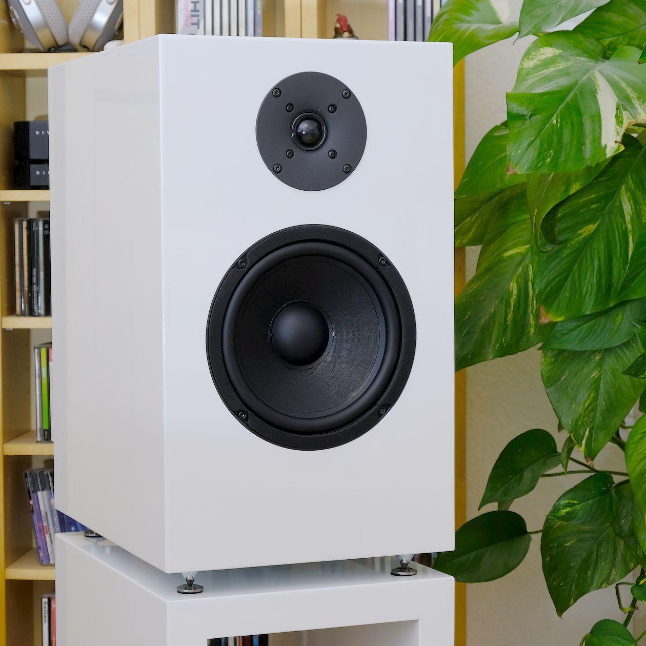 Test des 2-Wege Regallautsprecher Lautsprecher Cito Audio MODELL DBC-8K mit Compound / Isobarik Bass.