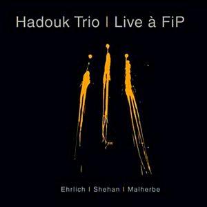 Hadouk Trio: Album Live à FIP